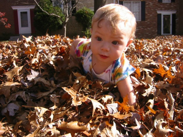 playing in the fall leaves