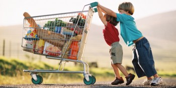 two young children pushing a shopping cart with groceries