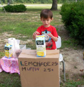 Selling Lemonade