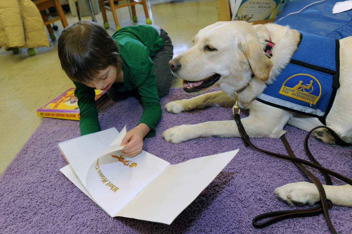 canine companions for independence  providing assistance