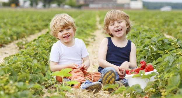 3 Summer Suggestions for Whole Body Learning in Children with Autism