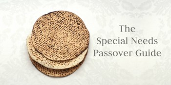 The special needs passover guide