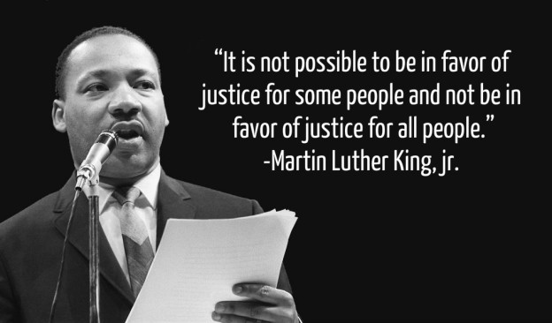 Dr Martin Luther King Quotes Inspiration 48 Disability Awareness Lessons Learned From Dr Martin Luther King